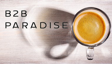 B2B Paradise